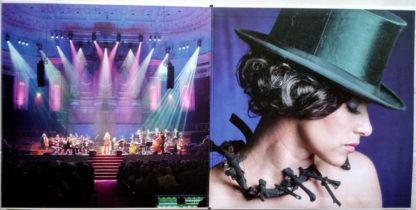 Ellen Ten Damme The Magpie Orchestra – Berlin Inside
