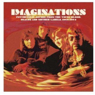 Various Imaginations LP