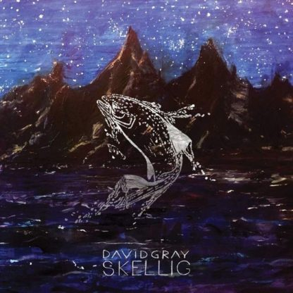 David Gray - Skellig (LP)